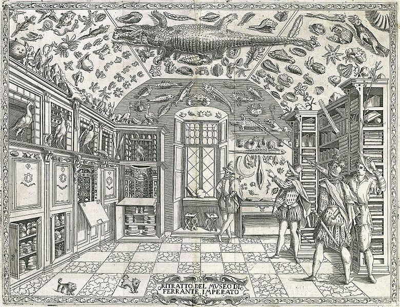 1.-Gabinete-de-curiosidades-Ferrante-Imperato
