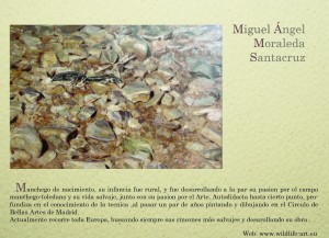 Miguel Ángel Moraleda