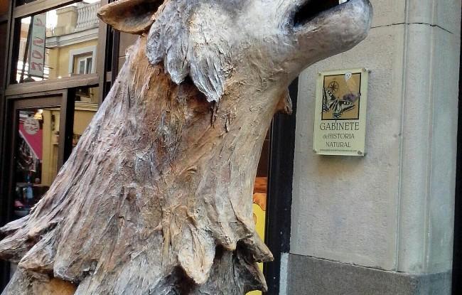 El Gabinete en defensa del lobo ibérico
