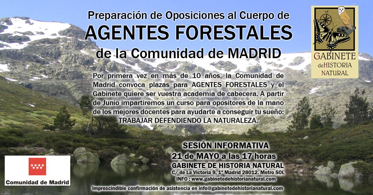 AgenteForestal
