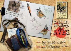 taller-dibujo-aves