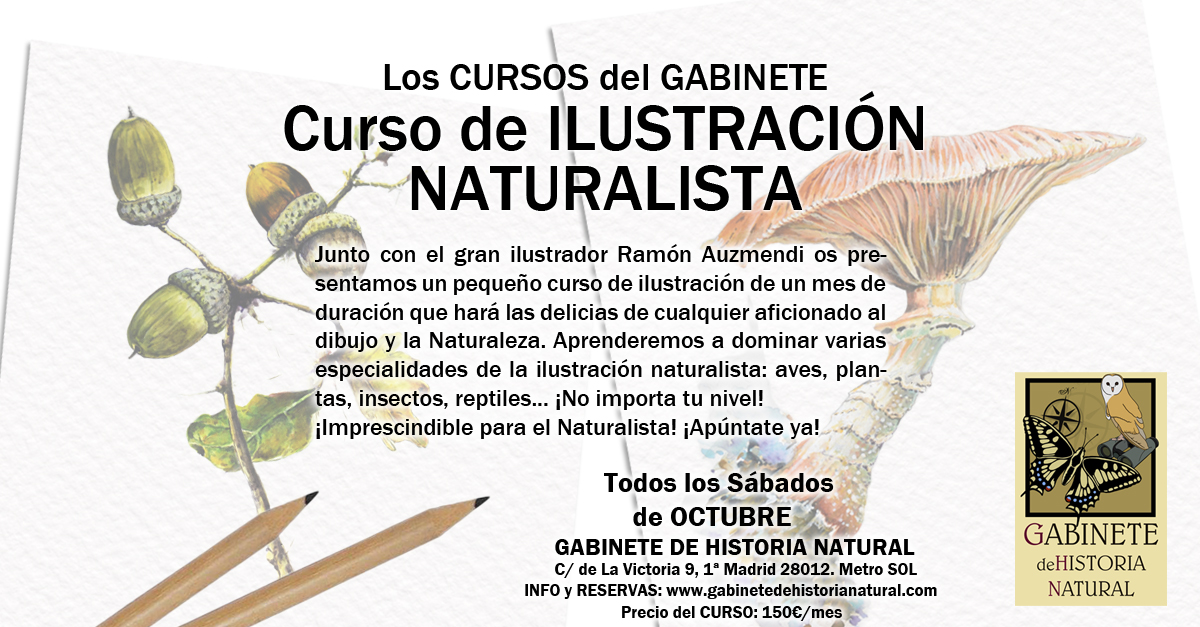 CursoIlustracionLargo2