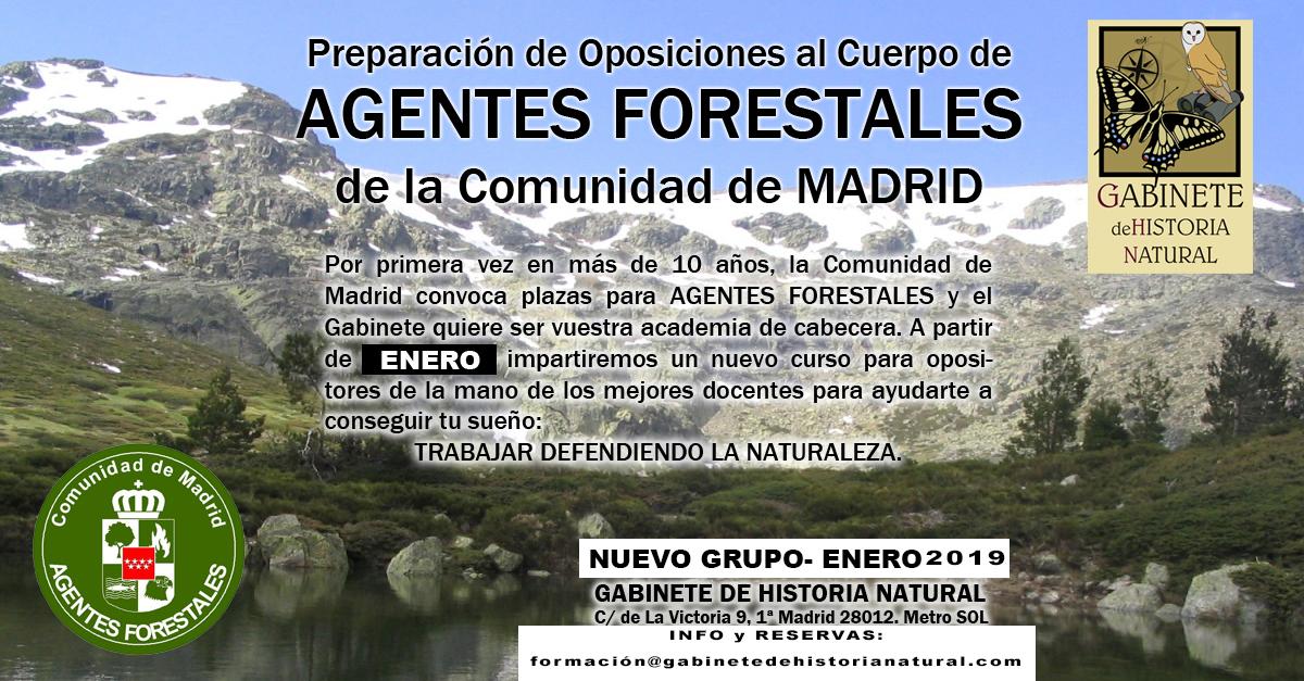 Forestales curso ENERO