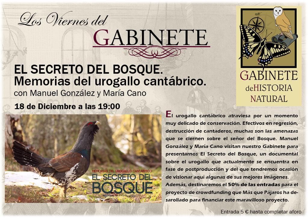 gabinete_historia_natural_urogallo_el_secreto_del_bosque