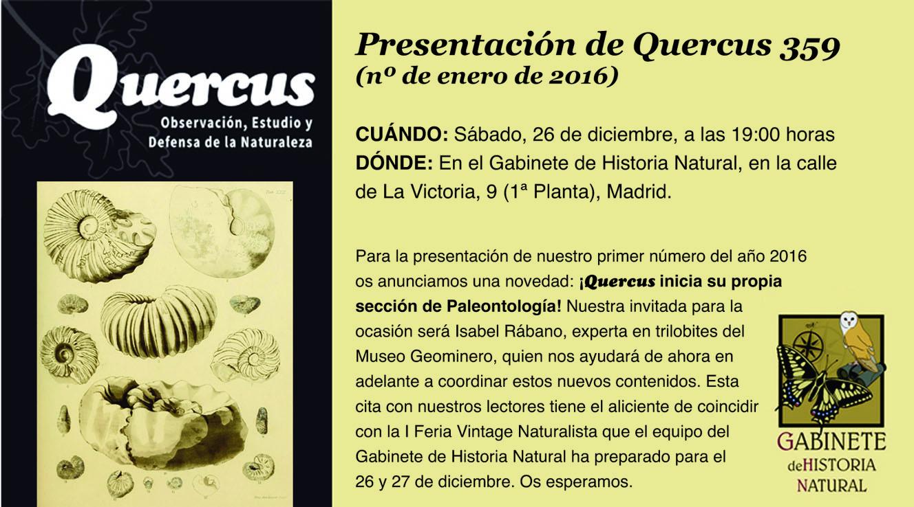 Quercus_gabinete_diciembre
